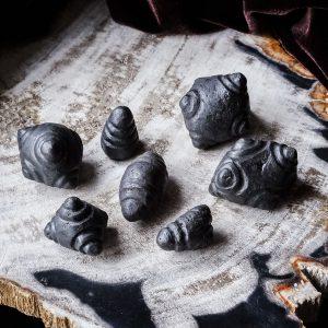 chumpi stones meteorite-sjamaan-sjamanisme opleiding-krachtdieren