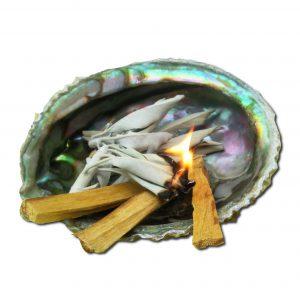 abaloneschelp-palo santohout-smudge